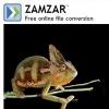 zamzar-thb