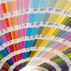 profesionalism-culori-thb
