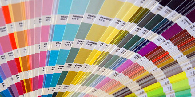 profesionalism în culori