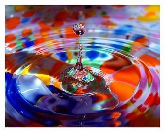 culorile-website