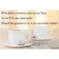 cum-sa-ai-cel-mai-citit-blog-statistici-ale-blogurilor-de-succes-11