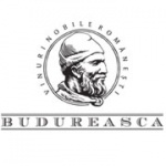 logo-budureasca